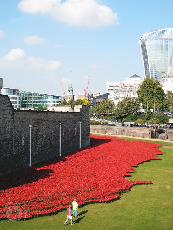tower-london-moscaluna