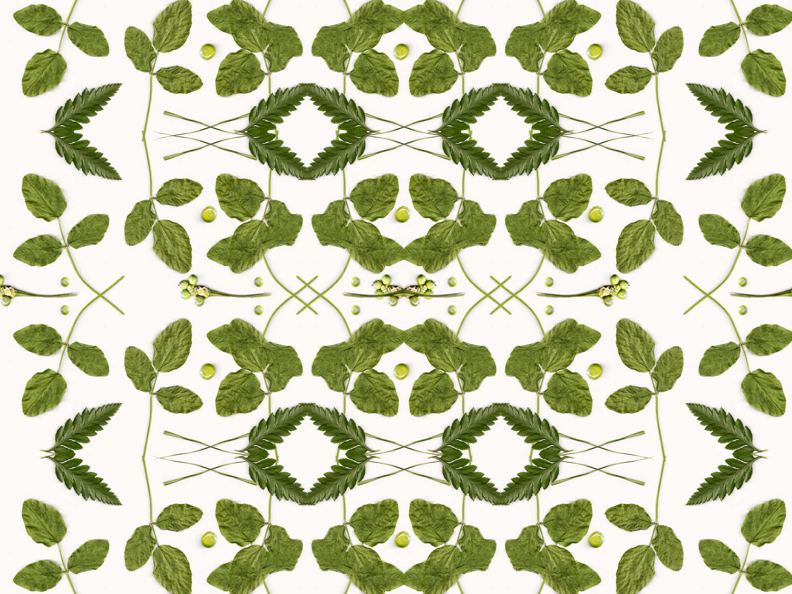 04-botanical-pattern-by-cocorrina_1600_c
