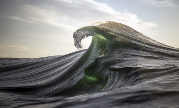 Ray Collins2
