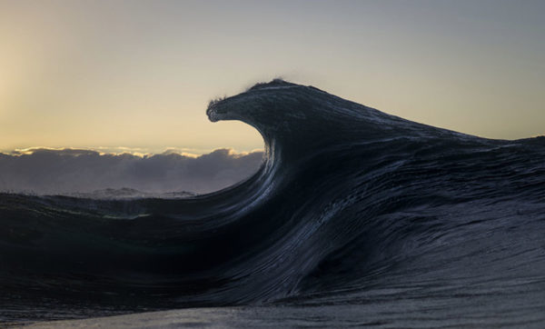 Ray Collins3