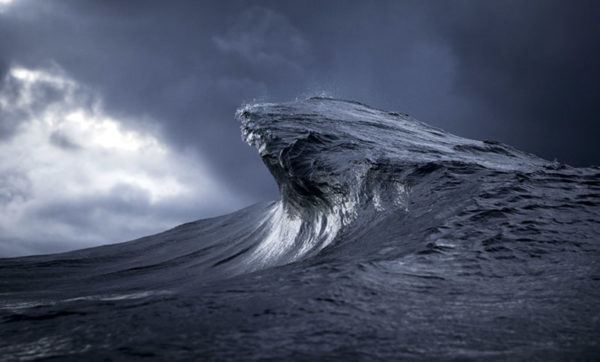 Ray Collins5