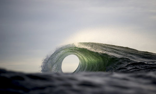 Ray Collins6