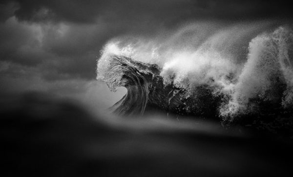 Ray Collins8