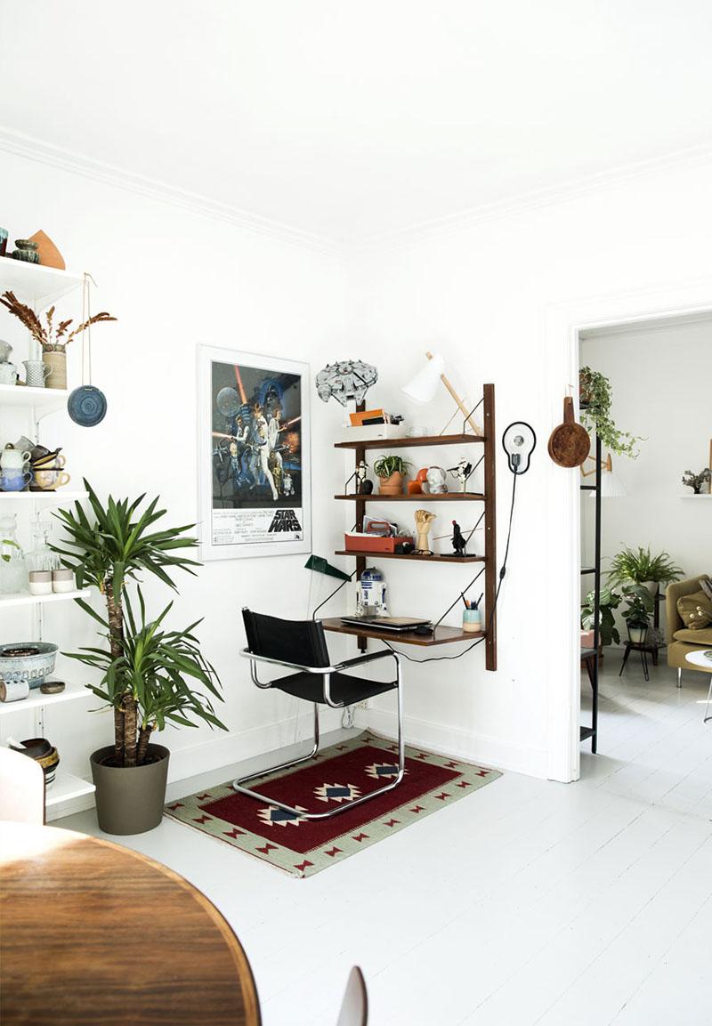 plantas para interior 4