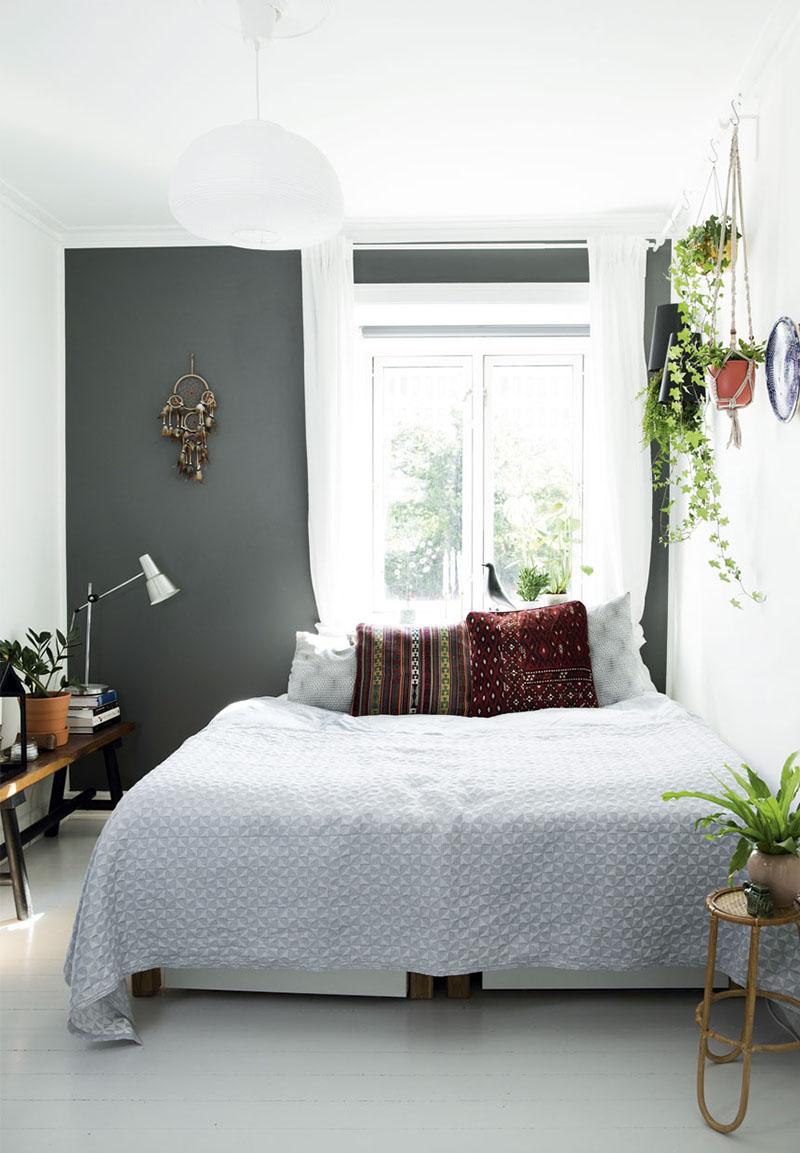 plantas para interior 6