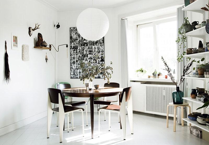 plantas para interior 8
