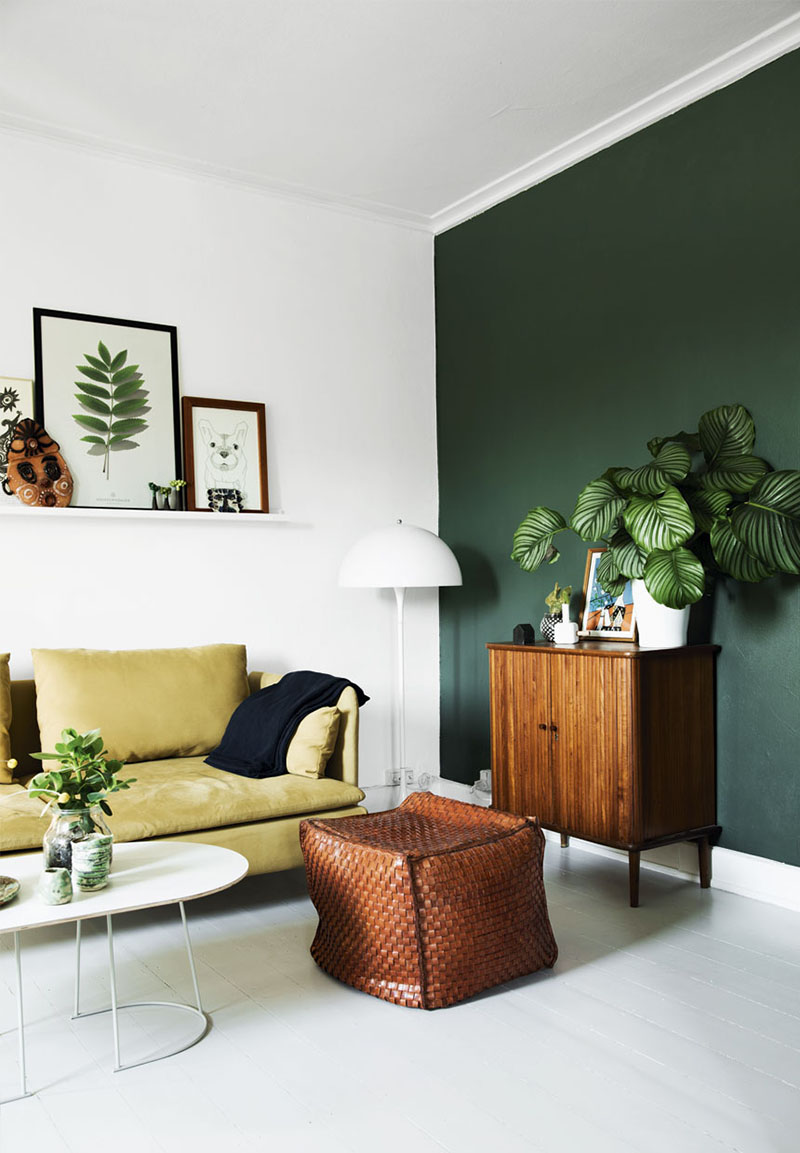 plantas para interior 9